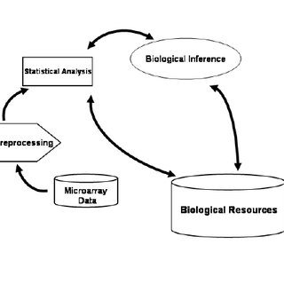 (PDF) A MultiAgent System for Classifying Bioinformatics