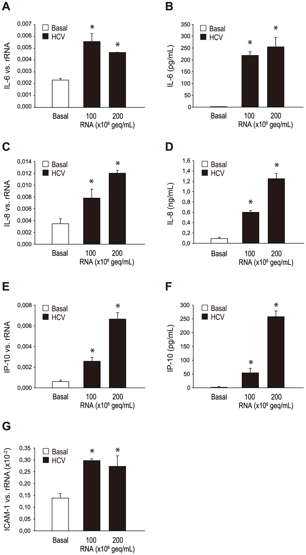 Effect of HCV RNA containing cryoprecipitates on the
