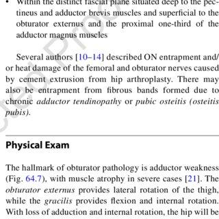 (PDF) Obturator Nerve Entrapment: Lower Extremity
