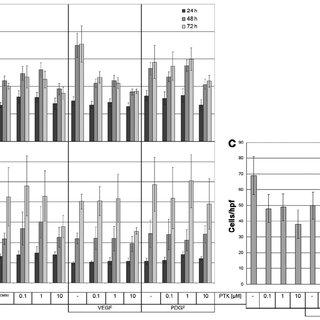 SK‐UT‐1 and SK‐LMS‐1 cells express VEGF receptor (VEGFR)‐1