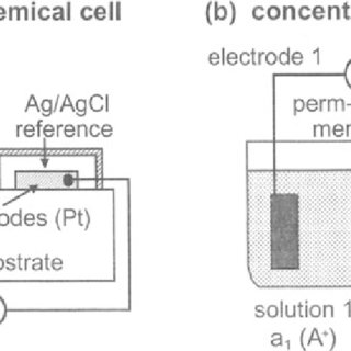 34 (a) Schematic representation of a conductance cell (in