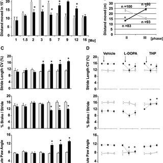 Mesostriatal Circuitry Striatal interneurons and MSNs