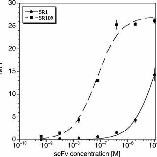 Co-stimulation assay measuring [ 3 H]-thymidine