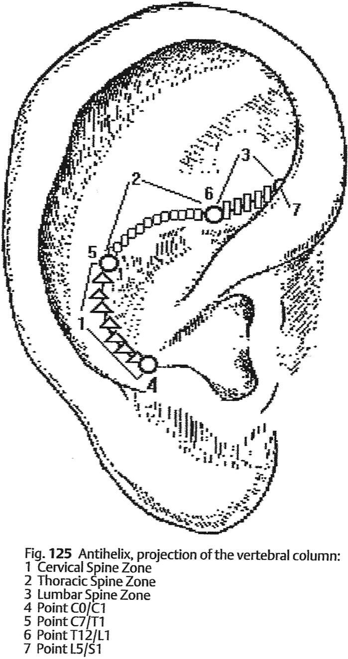ear diagram wiring diagram database Inner Ear Diagram for Students diagram of outer ear outer ear anatomy diagram to label electrical nose diagram ear diagram