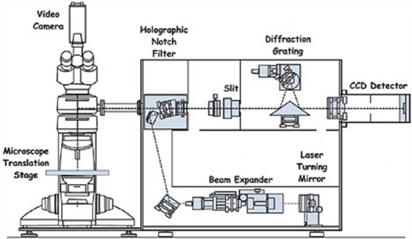 Schematic diagram of a Renishaw Raman microscope