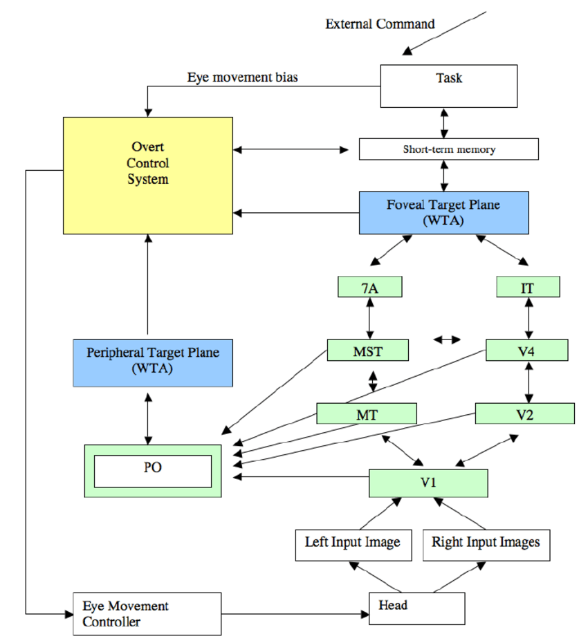 hight resolution of 1 block diagram overview of the extended selective tuning model showing the context of the overt control system the core ideas of the selective tuning