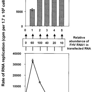 (PDF) Induction and Maintenance of Autonomous Flock House