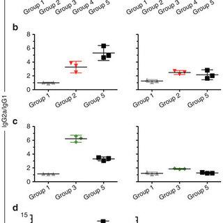 Assembly of recombinant rabies virus (RABV) expressing