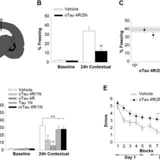 (PDF) Extracellular Tau Oligomers Produce An Immediate