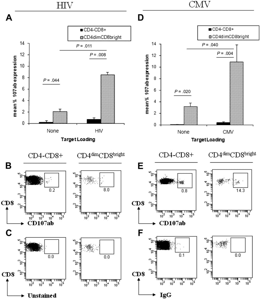 CD4 dim CD8 bright T cells have greater cytotoxic