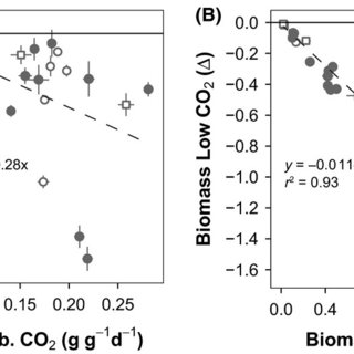Plants grown at low, ambient, and high CO2. Images