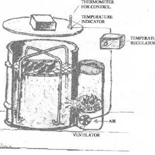 (PDF) Polycyclic aromatic hydrocarbons in meat smoked with