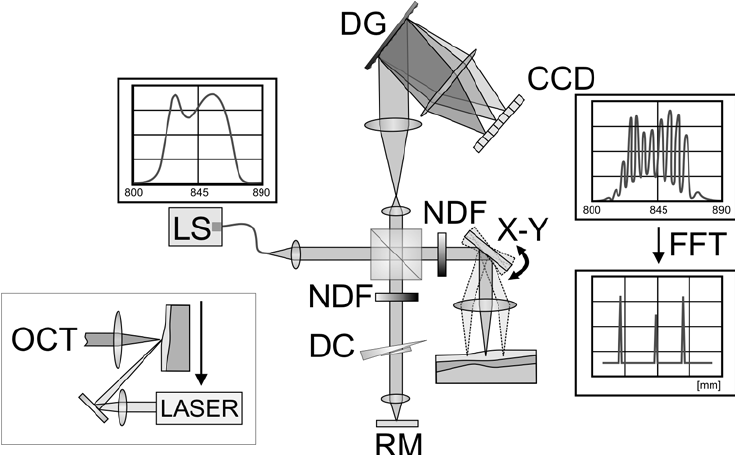 Diagram of the instrumental set-up: LS