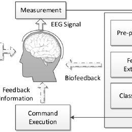 (PDF) A Robust Asynchronous SSVEP Brain-Computer Interface