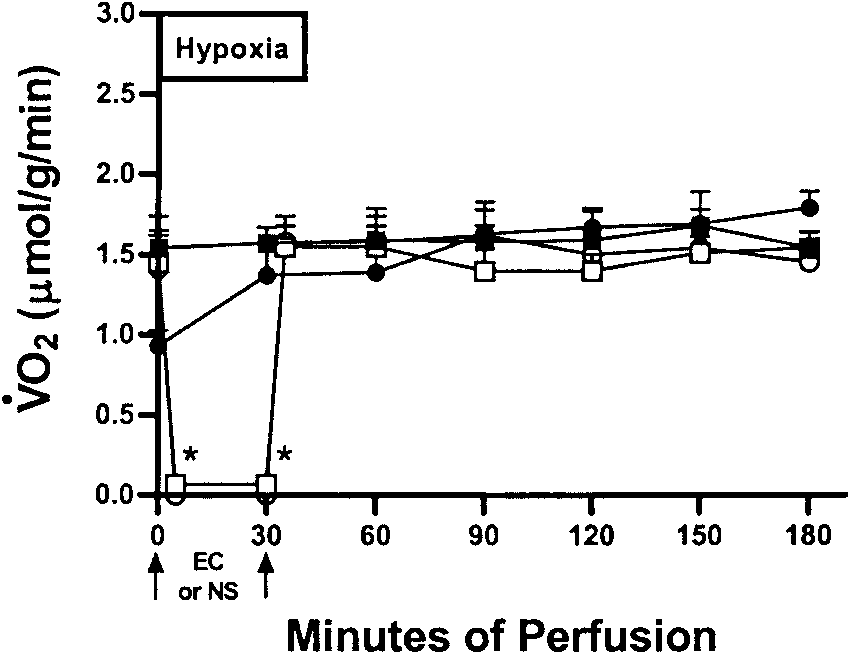 Sequential changes (means SE) in hepatic O2 consumption (V
