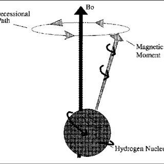 (PDF) HOSPITAL PHYSICS: Magnetic resonance imaging and