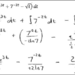 Environmental Issues at the university campus in the