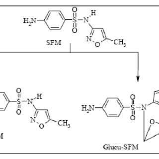 (PDF) Ozonation of sulfamethoxazole in municipal wastewater