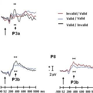 (PDF) Sequential P3 effects in a Posner's spatial cueing