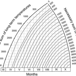 Demand (D) and supply (S) curves of the wheat flour and
