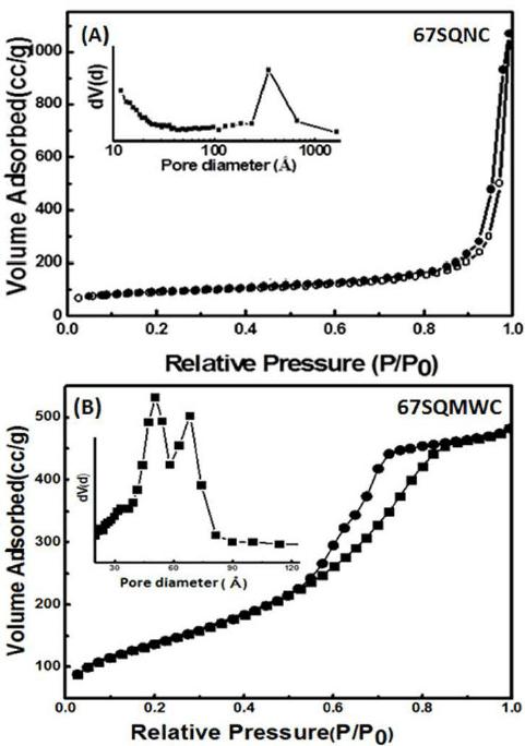 Nitrogen adsorption–desorption isotherm and pore size