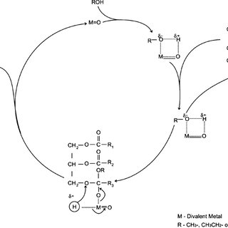 (PDF) Modern heterogeneous catalyst for biodiesel