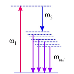 How To Make An Energy Level Diagram Snapper Rear Engine Rider Wiring Possible In Dendrimer Molecule Resulting From Chromophore Doping And Poling A Distribution Of Dipole Moments Will Create Multiple