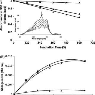 (PDF) Polyethylene Glycol-Modified Gelatin/Polylactic Acid