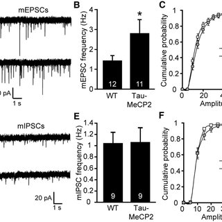 Behavioral phenotypes observed in mice that overexpress
