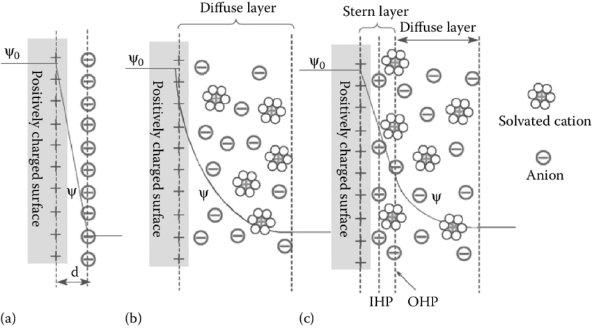 3 Models of the electrical double-layer at a positively