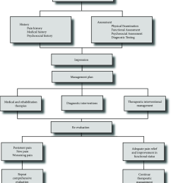 a comprehensive algorithm evaluation and management of chronic spinal pain  [ 850 x 1002 Pixel ]