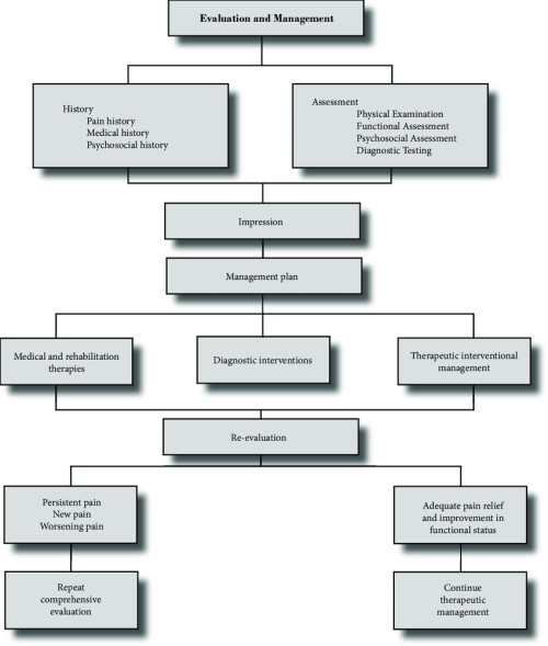 small resolution of a comprehensive algorithm evaluation and management of chronic spinal pain