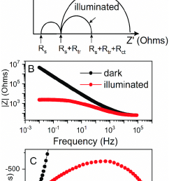 theoretical impedance spectra and an electrical equivalent circuit representing distribution of the resistance in photoelectrochemical cell [ 824 x 1428 Pixel ]