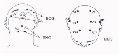 derivations of EEG, EOG, and EMG signals, modification of