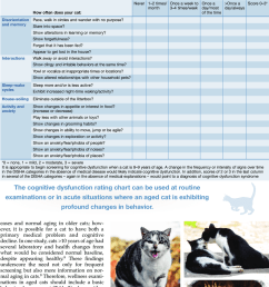 changes in behaviorincreased vocalization and altered social interactions both with other pets and owners [ 850 x 1029 Pixel ]