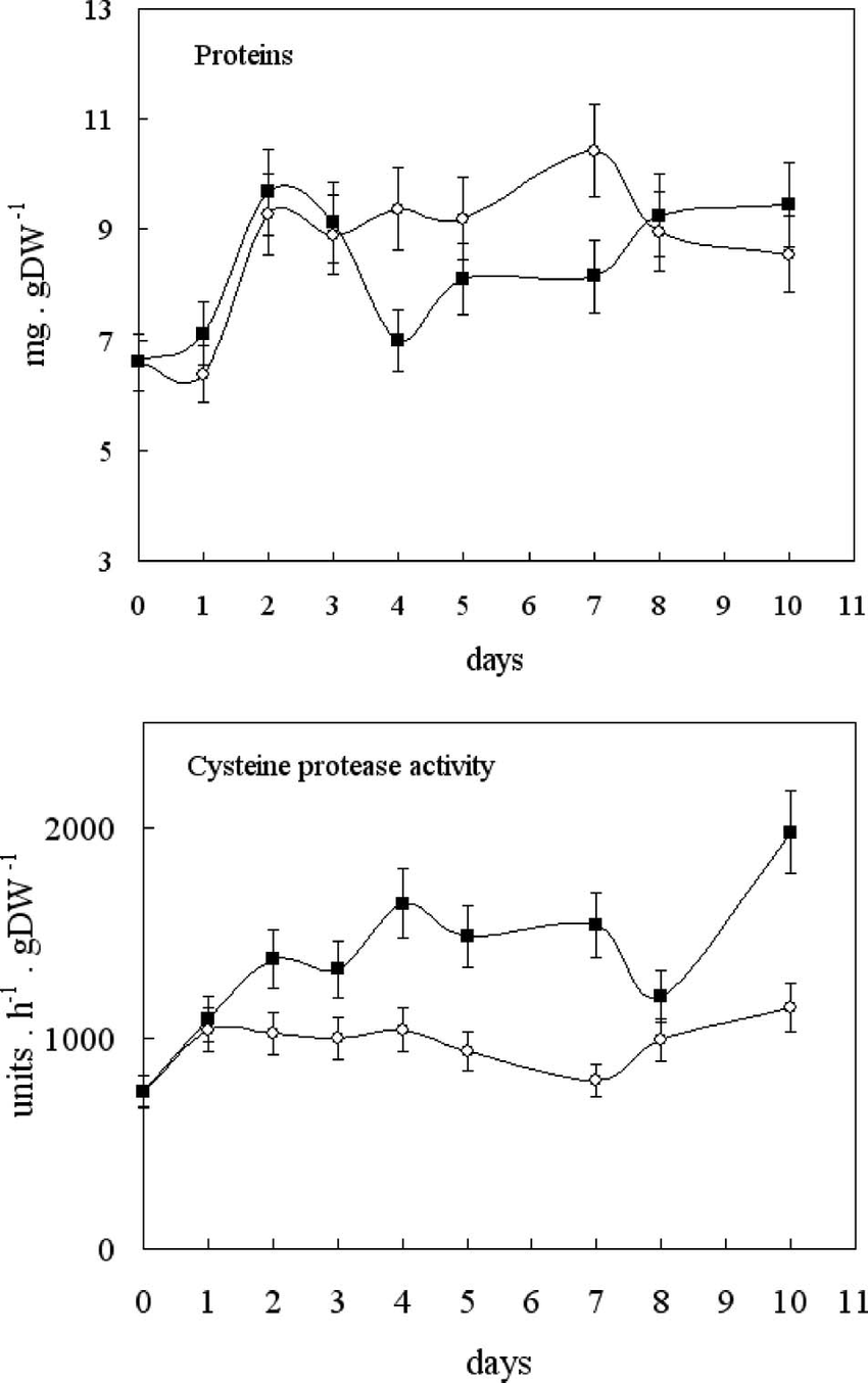 medium resolution of protein content and cysteine protease activity of control and 10 mm download scientific diagram