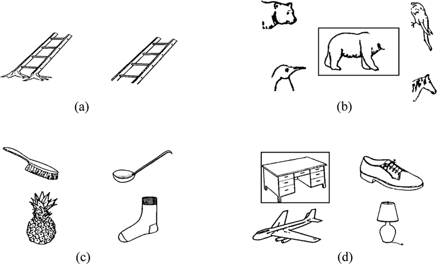 (a) Example of anomalous and correct pictures, (b) example