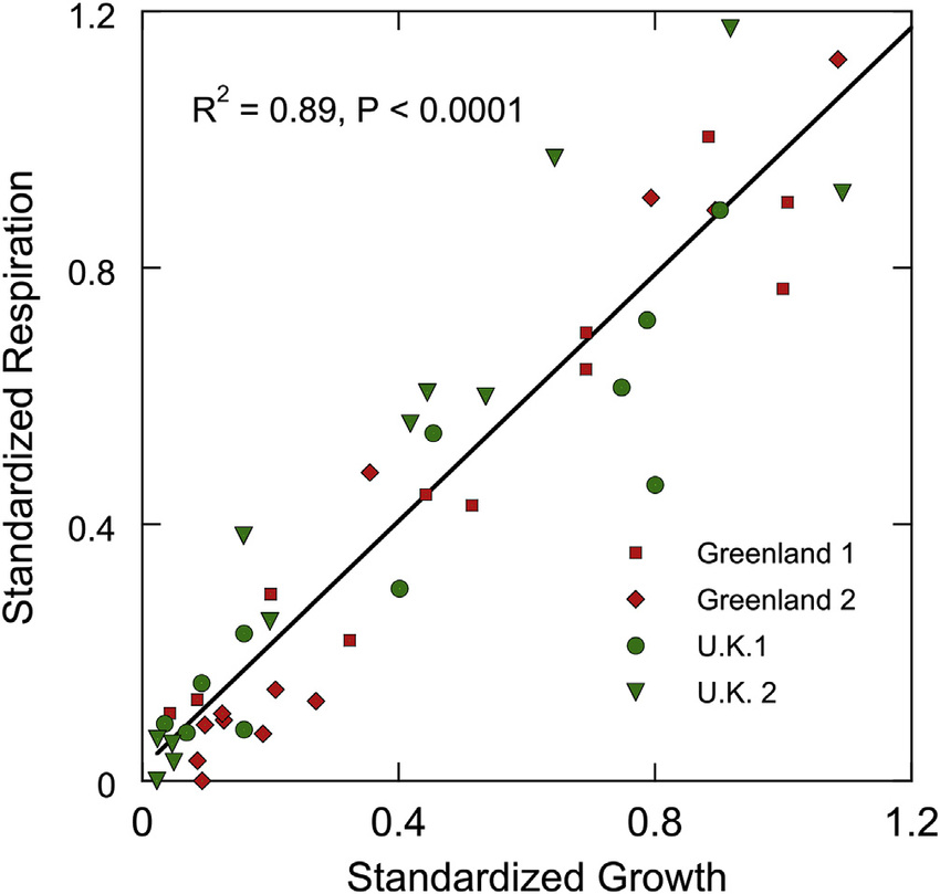 The relationship between standardized bacterial growth and
