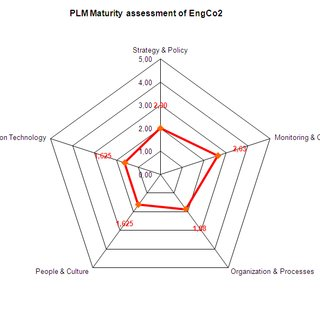 (PDF) Assessing maturity requirements for implementing and