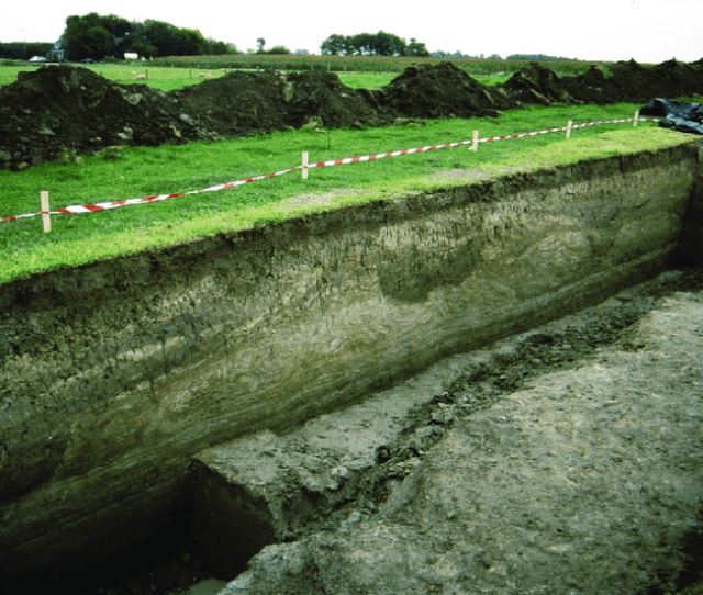 Section Through A Small Dike In The Terp Of Peins In Friesland  The Dike Consists Of Randomly Placed Sods With A Lining Of Carefully Placed Sods On