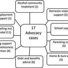 (PDF) Investing in advocacy for parents with learning
