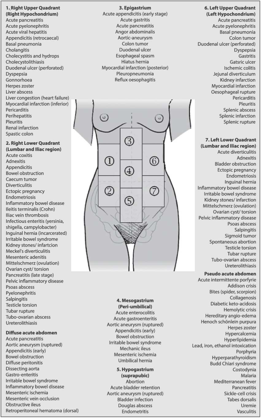 Differential diagnosis acute abdominal pain (adapted from ...