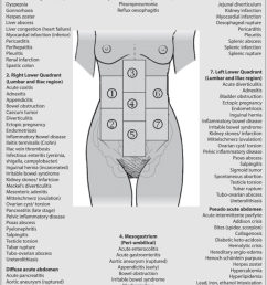 differential diagnosis acute abdominal pain adapted from malbrain et al 5  [ 850 x 1361 Pixel ]
