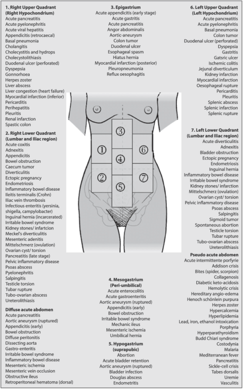 small resolution of differential diagnosis acute abdominal pain adapted from malbrain et al 5