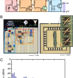 circuit schematics images and frequency response of a radio that uses carbon nanotube array transistors for all of the active components  [ 850 x 1384 Pixel ]