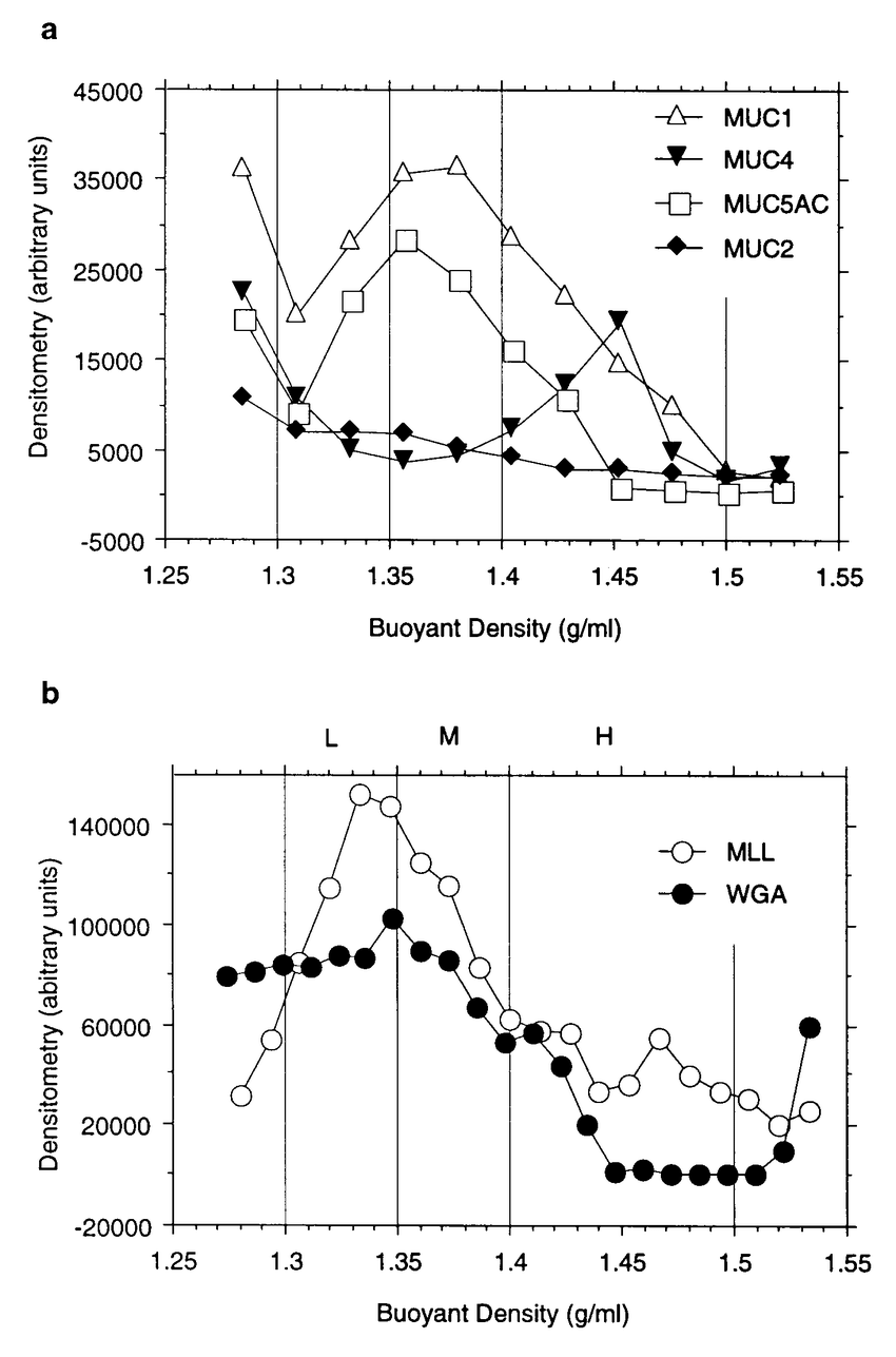 hight resolution of cesium chloride density gradient profiles of human conjunctival extract a dot blots of