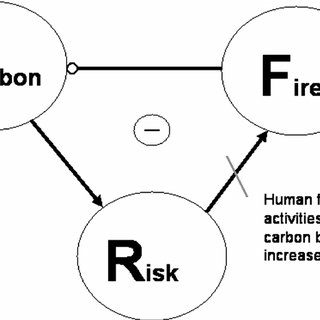 Feedback loop for carbon, fire, and risk. The solid