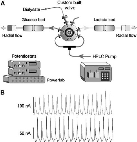Schematic diagram of the on-line microdialysis assay