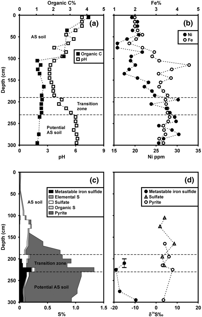 medium resolution of the rintala acid sulfate soil vertical distribution of a ph and organic c