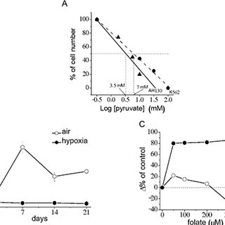 Effects of antimycin A on NADP and NADPH levels and their